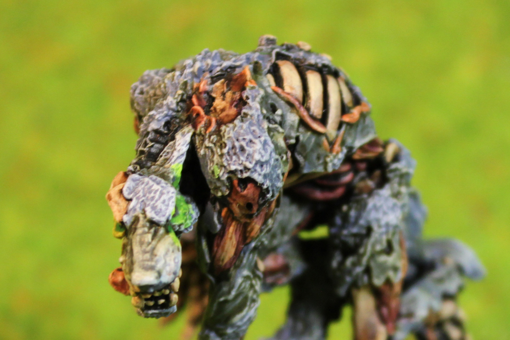 Dungeons & Dragons – Zombie Werewolf (Reaper Miniatures)