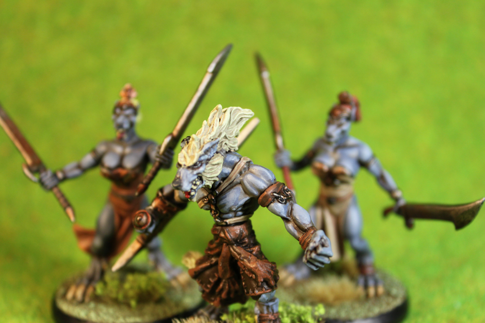 Dungeons & Dragons – Wolfen Shadow Trackers and Sacred Vestals (Rackham Miniatures)