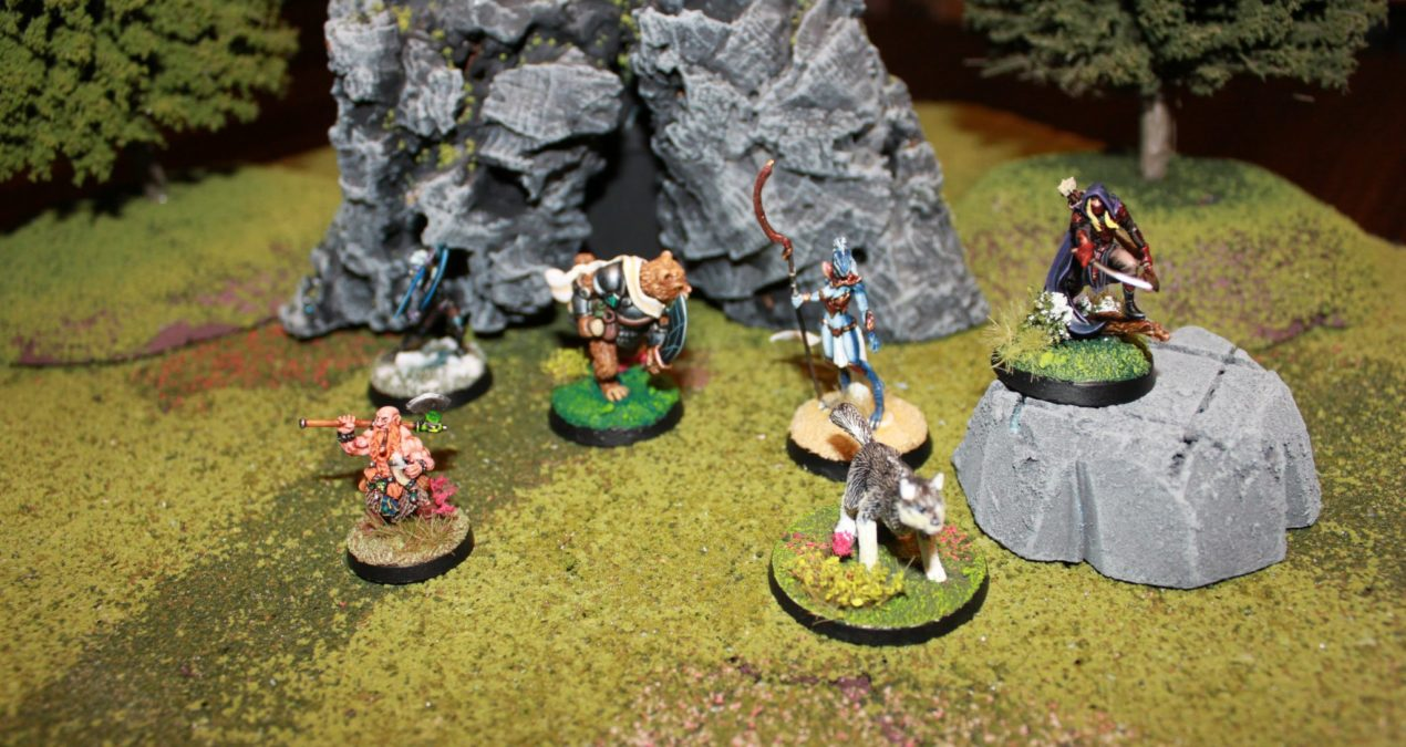 Dungeons & Dragons – Gaming board set 1 – Woodland