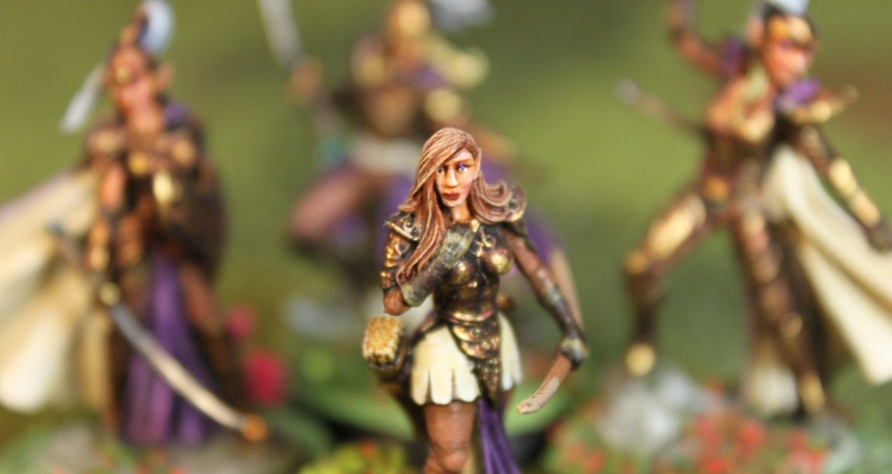 Dungeons & Dragons – High Elves (Darksword Miniatures)